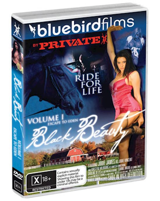 Adult Toys And Dvd 113